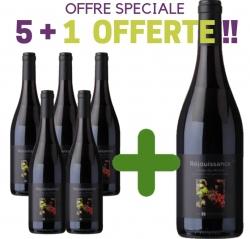 """OFFRE SPÉCIALE Côtes du Rhône Rouge AOC """"REJOUISSANCE"""" 5+1 Offerte"""