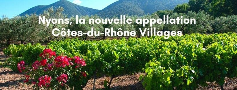 Du Côtes-du-Rhône Villages NYONS bientôt à la Coopérative Vignolis !