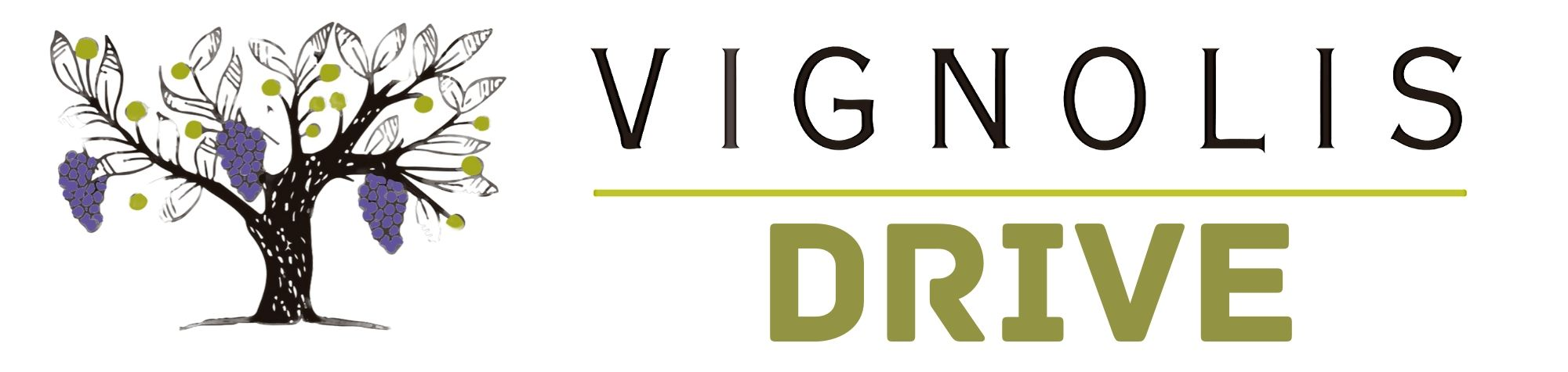 MODALITES SERVICE DRIVE VIGNOLIS NYONS